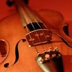 弦楽器奏者のためのアレクサンダーテクニークのレッスン