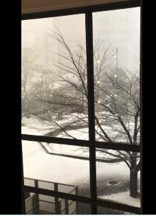 休憩中に入ったカフェから見えた雪の札幌