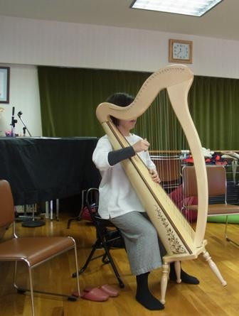 アイリッシュハープの演奏-指が胴体に近づく