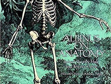 Albinus